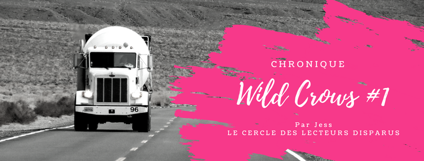 Chronique Wild Crows
