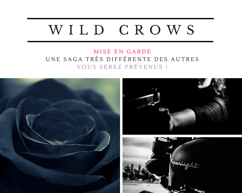 Wild Crows : avertissement