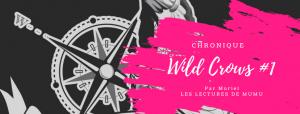 Chronique Wild Crows - Booktube