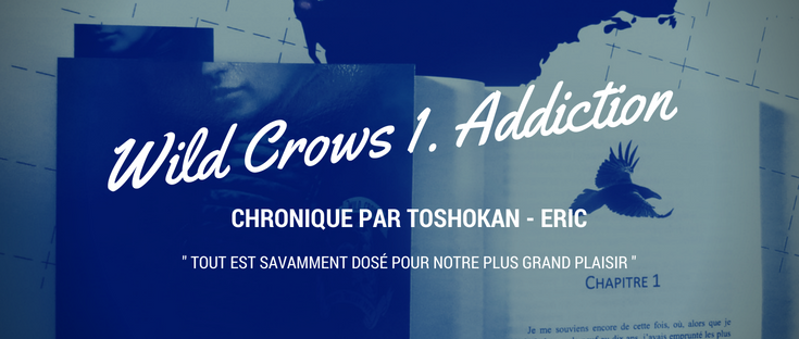 chronique wild crows 1
