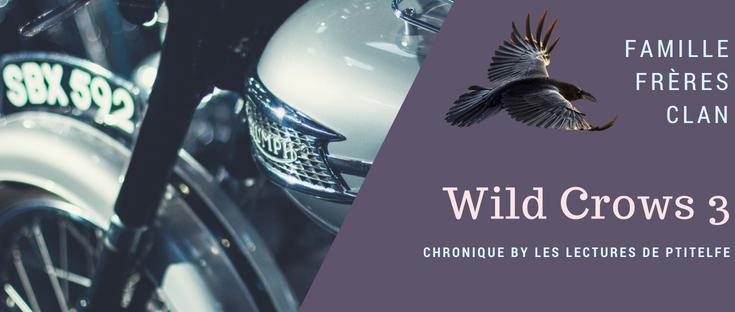 wild crows 3 confession