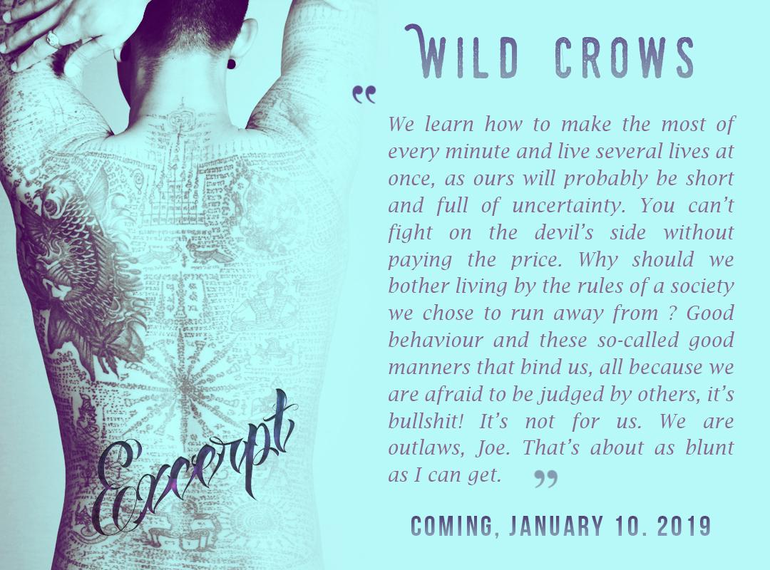 excerpt wild crows