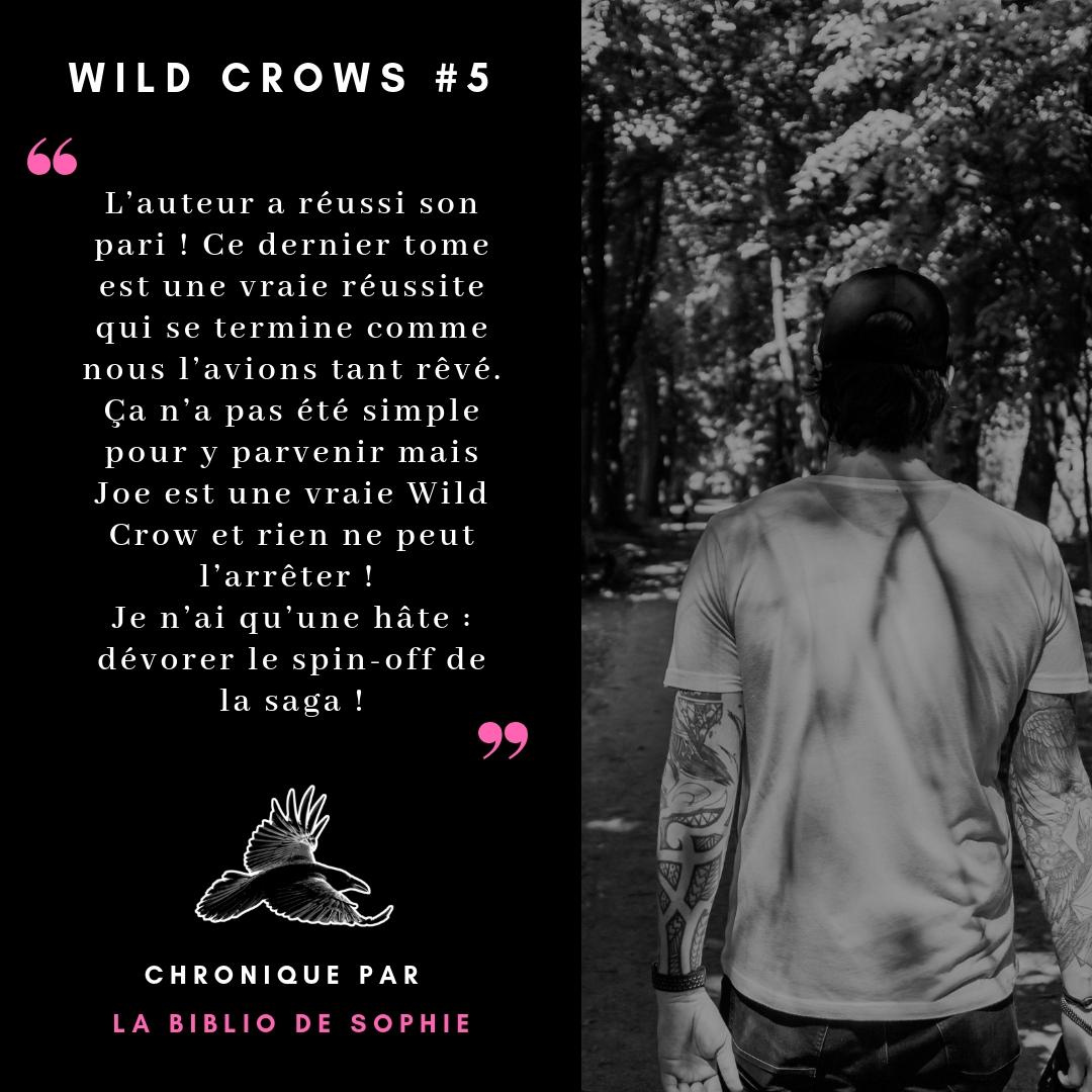 wild crows