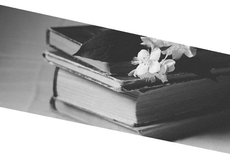 lecture en ligne